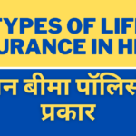 5 Types of Life Insurance in Hindi